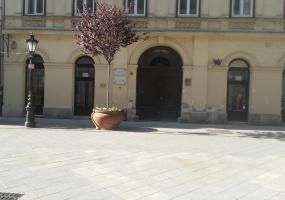 Vaci pesehodnoi Vaci utca district 5,Hungary,Hungary,Commercial,Vaci utca,Vaci utca district 5,2,1136