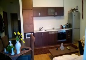 Hungary,Hungary,1 Room Rooms,Apartment,1157