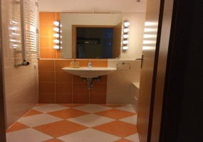 Hungary,Hungary,1 Bedroom Bedrooms,1 BathroomBathrooms,Apartment,Corvin Setany Cordia Premier Building,6,1129