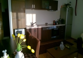 Hungary,Hungary,1 Room Rooms,Apartment,1157